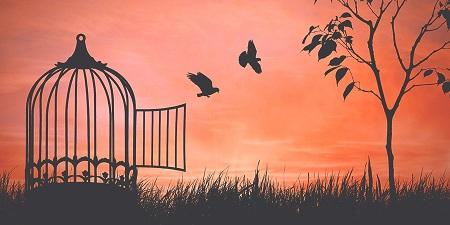freedom c PsychoShadow www.bigstockphoto.com
